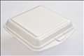 Foam Food & Burger Takeaway Containers
