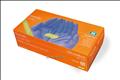 Premium Nitrile Examination Gloves